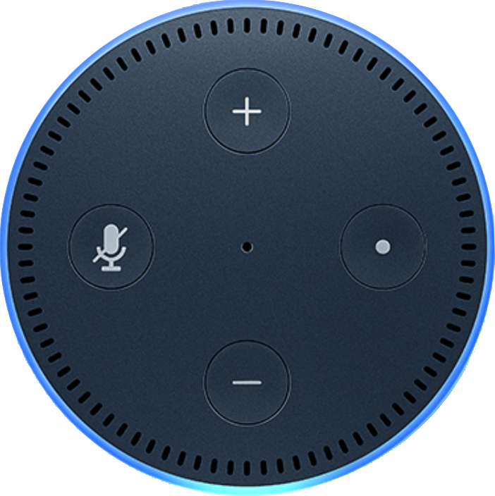 Actual size image of  Amazon Echo Dot .